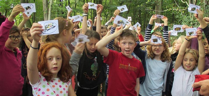 Year 4 Residential to Beaulieu, New Forest