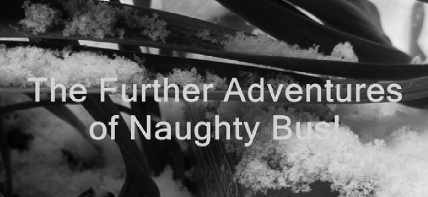 Further Adventures of the Naughty Bus