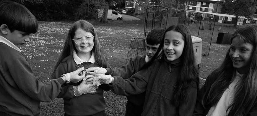 Outdoor learning – Chicks a growing!